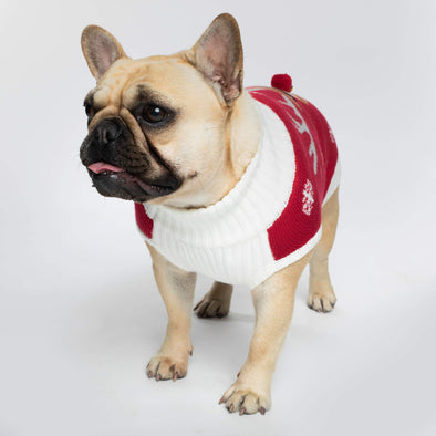 Make it rein Pull de Noël pour chiens Accessories SillySanta