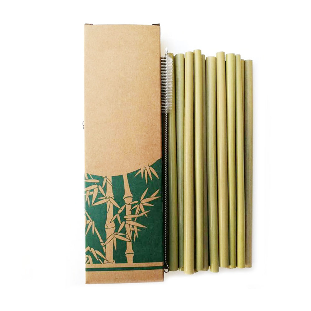 Natural Bamboo Straw Set Pack of 10 | Reusable & Eco-Friendly