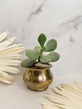 Load image into Gallery viewer, Brass Planter