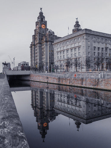 The Royal Liver Buildings Reflection