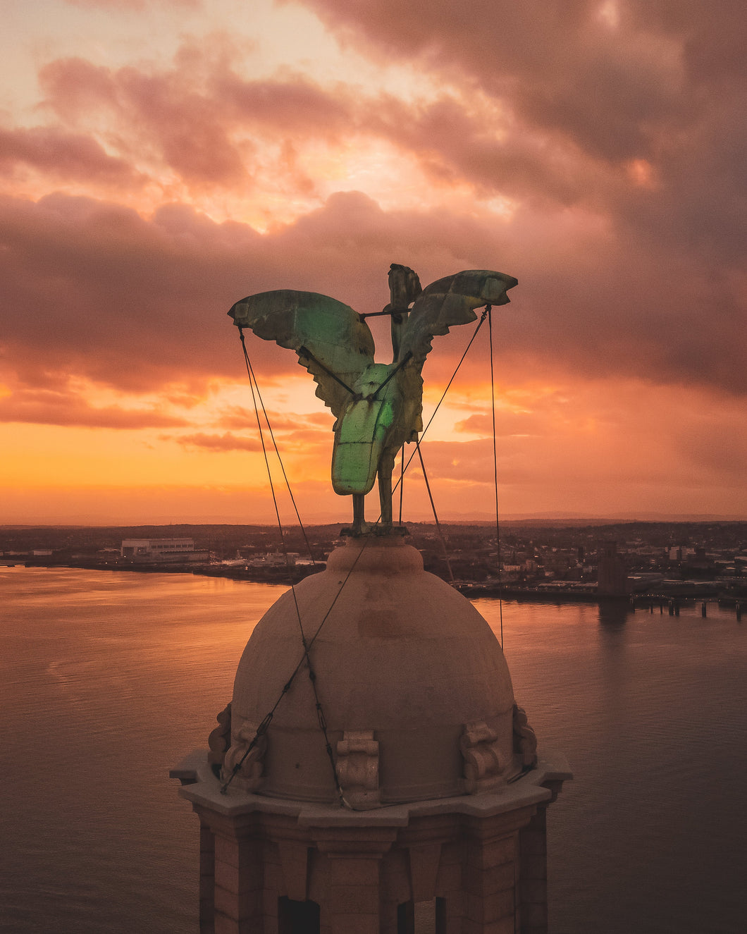 Liver Bird Sunset
