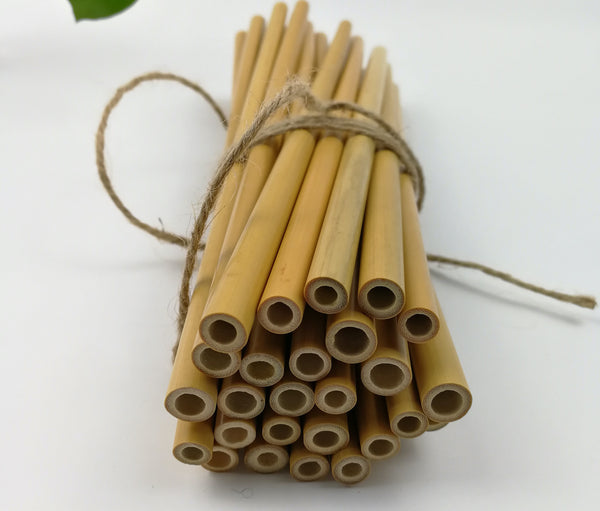 BAMBOO DRINKING STRAWS - Set of 10