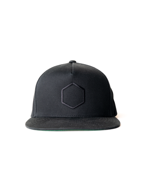 LP Tonal Embroidered Hat