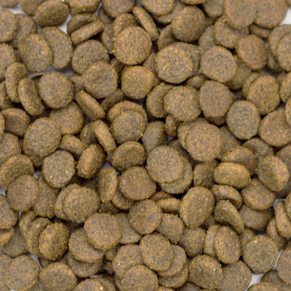 Grain Free Pork, Sweet Potato and Apple Working Dog Complete Food - 15kg
