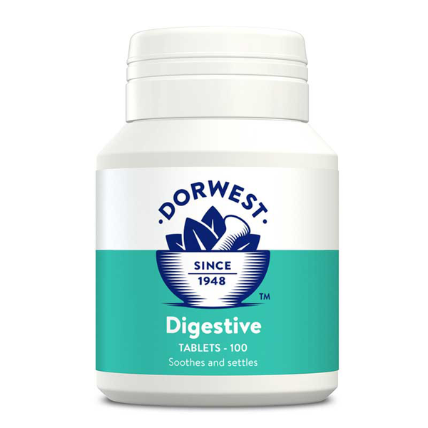Digestive Supplement Tablets