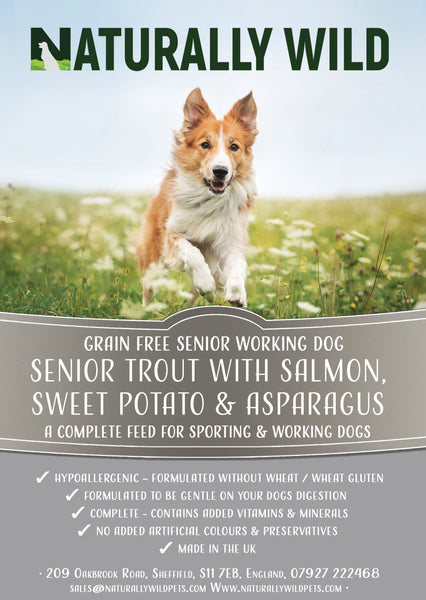 Grain Free Senior Trout with Salmon, Sweet Potato and Asparagus Working Dog Complete Food - 15kg