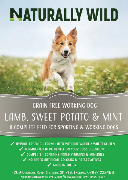Grain Free Lamb, Sweet Potato and Mint Working Dog Complete Food - 15kg