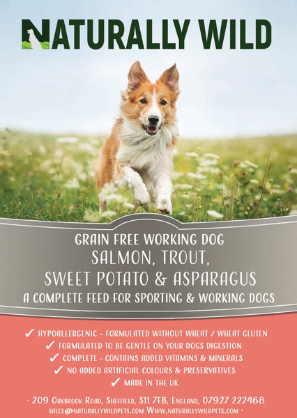 Grain Free Salmon, Trout, Sweet Potato and Asparagus Working Dog Complete Food - 15kg