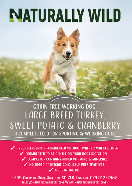 Grain Free Large Breed - Turkey, Sweet Potato, Cranberry Working Dog Complete Food - 15kg