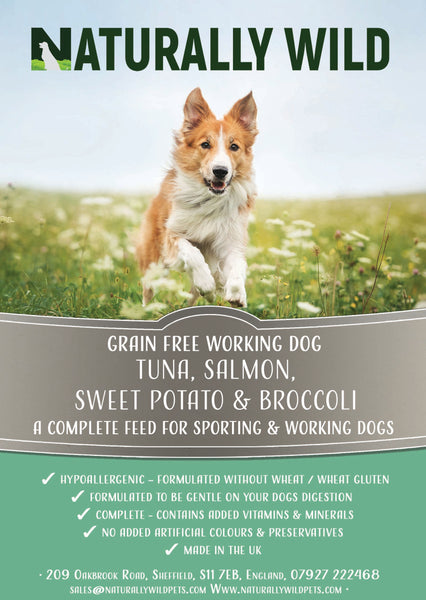 Grain Free Tuna, Salmon, Sweet Potato and Broccoli Working Dog Complete Food - 15kg