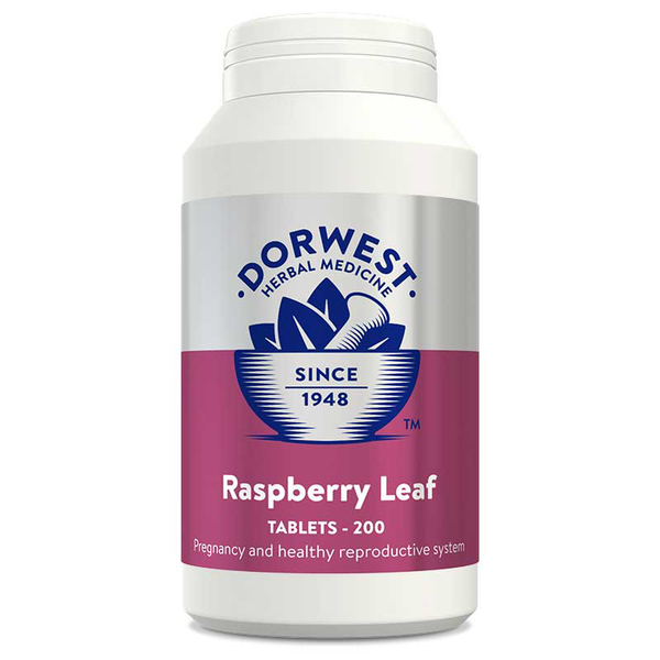 Raspberry Leaf Tablets