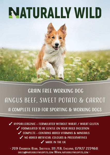 Grain Free Angus Beef, Sweet Potato and Carrot Working Dog Complete Food - 15kg
