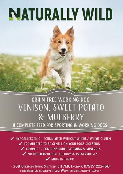 Grain Free Venison, Sweet Potato and Mulberry Working Dog Complete Food - 15kg