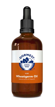 Wheatgerm Oil Liquid