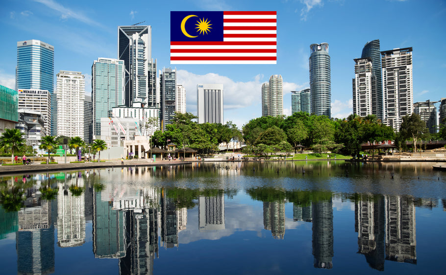 International Driving License in Malaysia