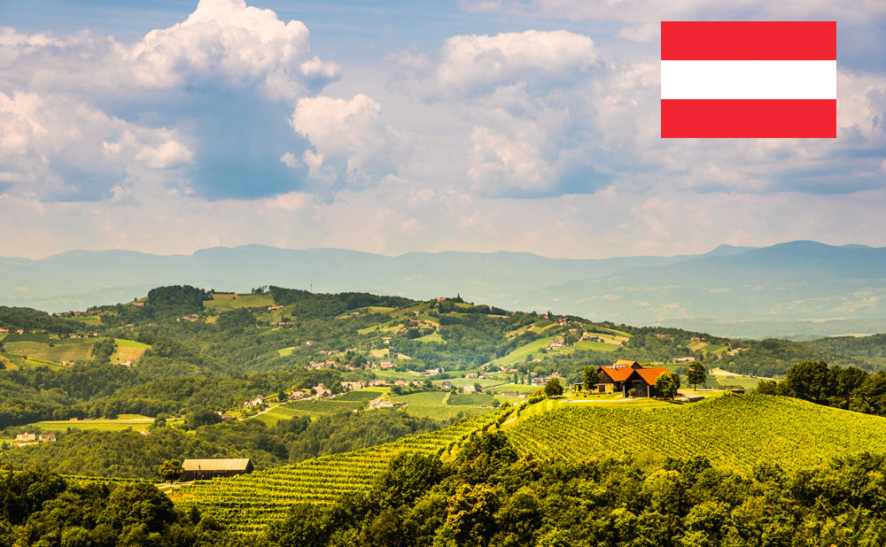 Landscape of vineyards in south Styria in Austria
