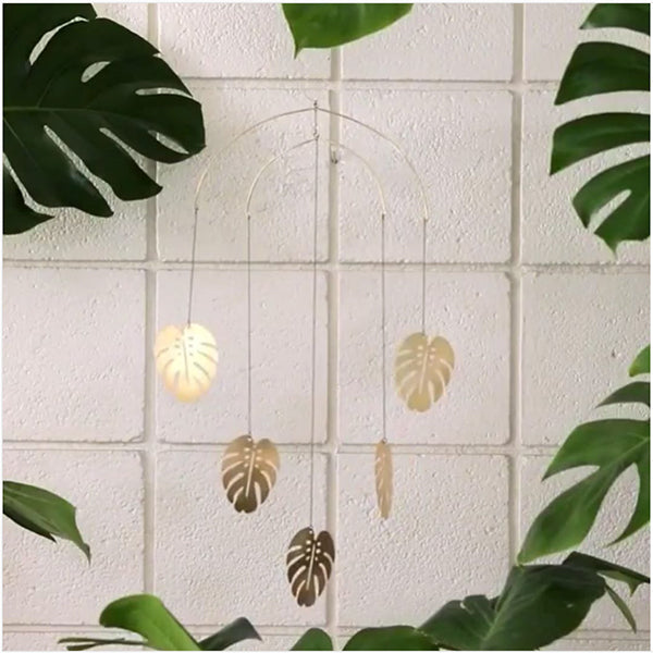 Monstera mobile on instagram feature