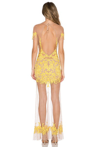Mustard Sheer Lace Maxi Dress - Kustom Label - 3