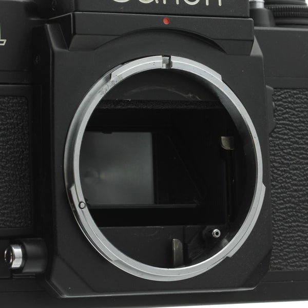 Canon F-1N Film Camera Body Beautiful Condition 2014 CLA
