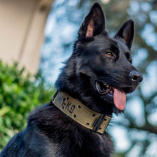"Load image into Gallery viewer, M1-K9 Collar, Gen. 3 Pro Series, OD Green, Adjustable 16""-26"""