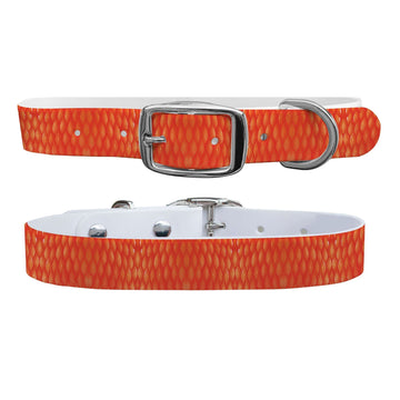 Red Snapper Scales Collar Dog Collar C4 BELTS
