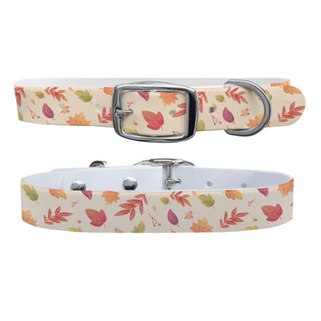 Seasons Change Dog Collar Dog Collar C4 BELTS