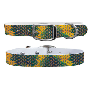 Spotty Scales Collar Dog Collar C4 BELTS