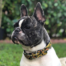 Load image into Gallery viewer, Sunflower Dog Collar