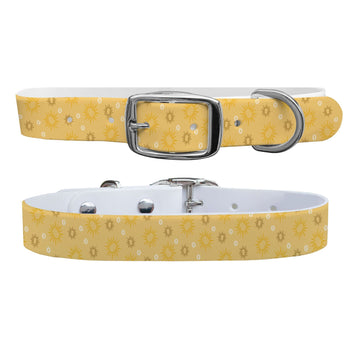 Sunlight Dog Collar Dog Collar C4 BELTS