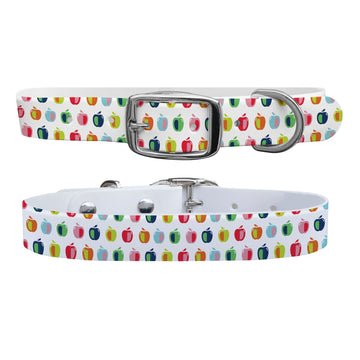 Apples Dog Collar Dog Collar C4 BELTS