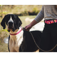 Load image into Gallery viewer, Bright Geometric Dog Collar