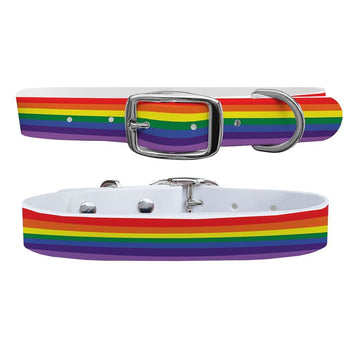 Rainbow Dog Collar Dog Collar C4 BELTS