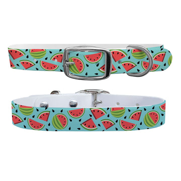 Sliced Watermelon Dog Collar Dog Collar C4 BELTS