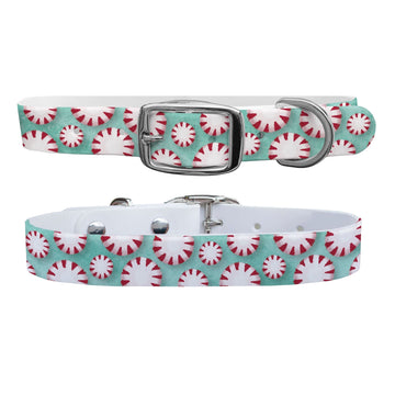 Mint To Be Dog Collar Dog Collar C4 BELTS