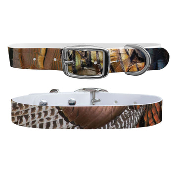 The Gobbler Dog Collar Dog Collar C4 BELTS