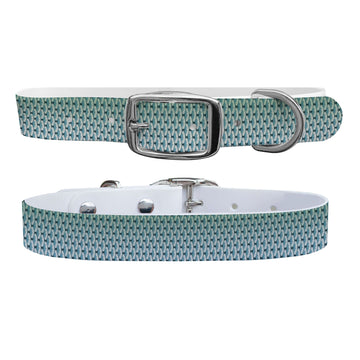 King Scales Dog Collar Dog Collar C4 BELTS