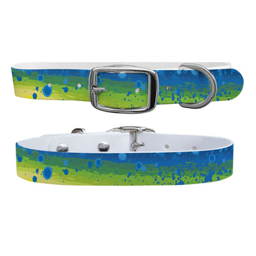 Mahi Dog Collar Dog Collar C4 BELTS