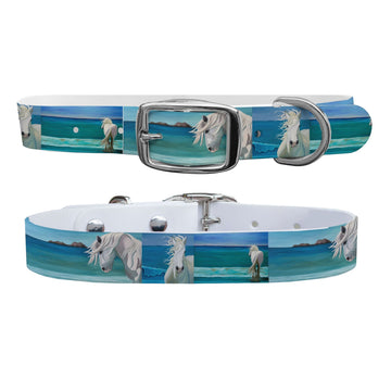 Leslie Anne Webb - Sam at The Beach Dog Collar Dog Collar C4 BELTS