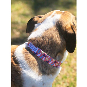 Atlanta Rescue Dog Cafe - Love Comes in All Sizes (Colors) Dog Collar