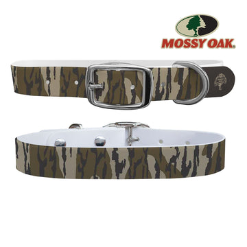 Mossy Oak - Bottomland Heritage Collar Dog Collar C4 BELTS