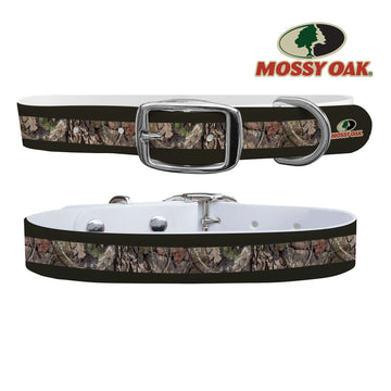 Mossy Oak - Break Up Country Forest Green Stripe Collar Dog Collar C4 BELTS