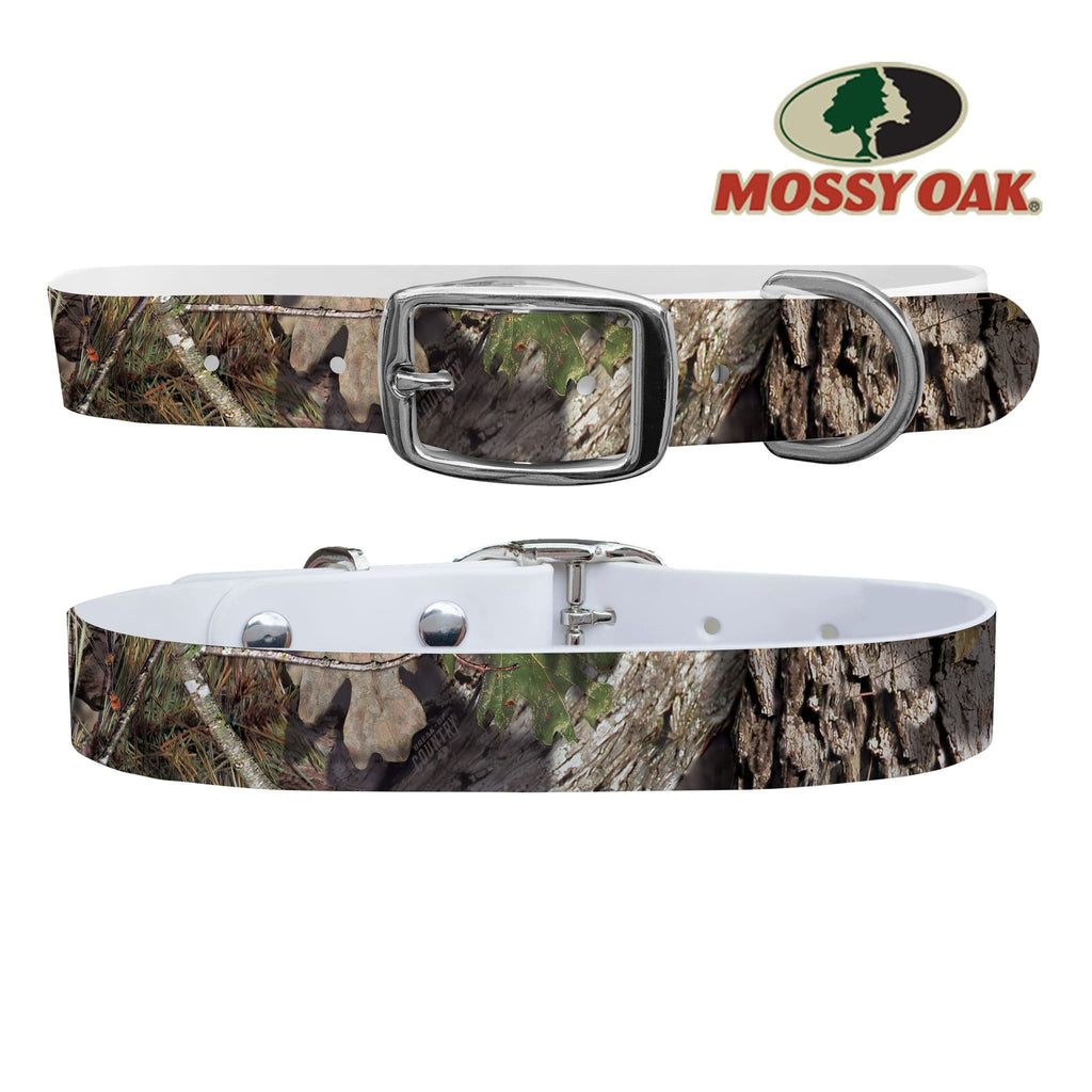 Mossy Oak - Break Up Country Dog Collar Dog Collar C4 BELTS