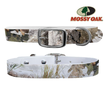 Mossy Oak - Break Up Country Snow Drift Dog Collar Dog Collar C4 BELTS