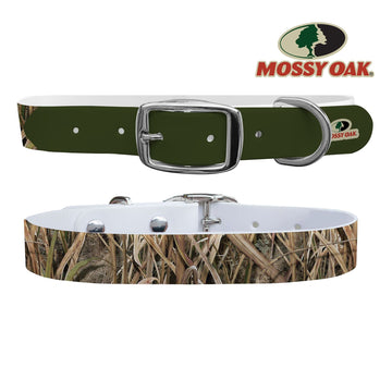 Mossy Oak - Shadow Grass Blades Olive Tip Collar Dog Collar C4 BELTS