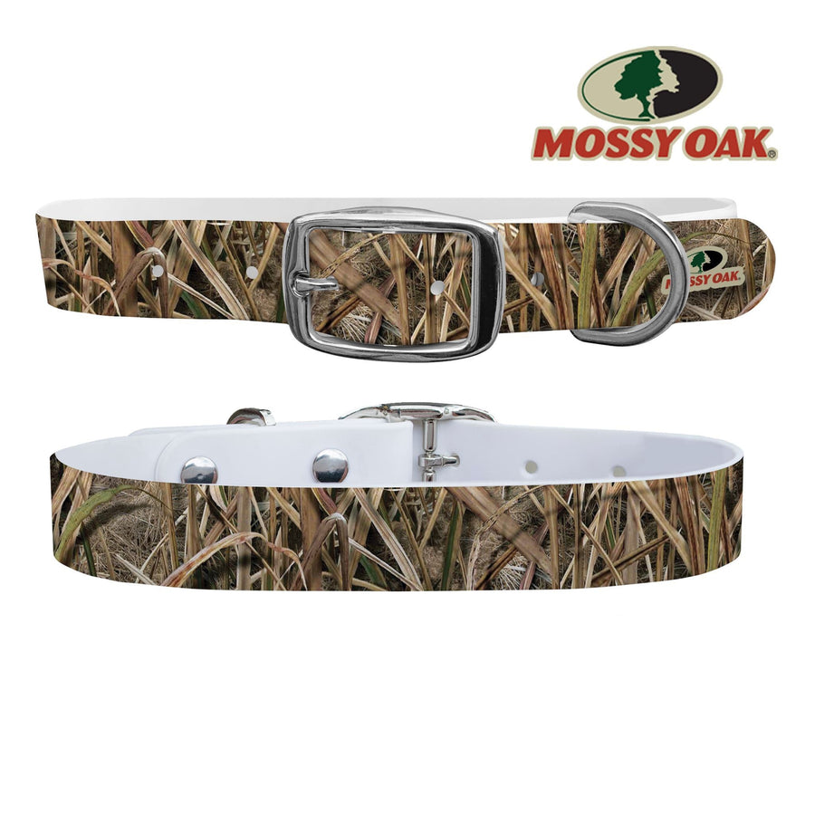 Mossy Oak - Shadow Grass Blades Brand Collar Dog Collar C4 BELTS