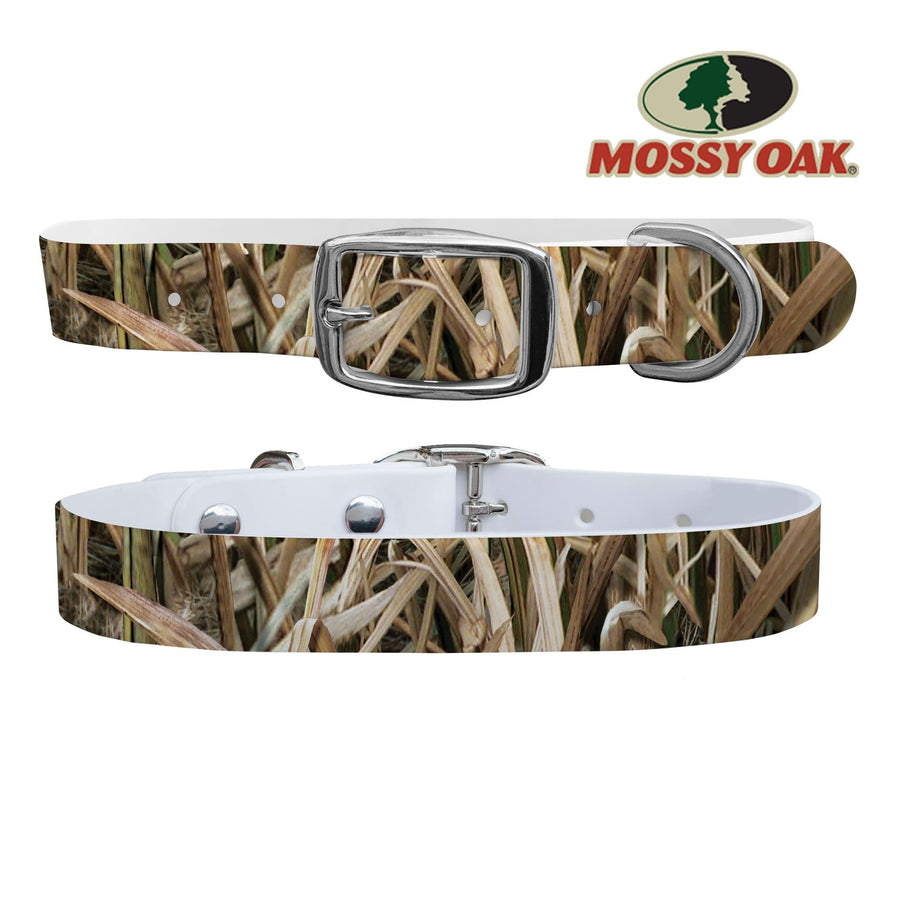 Mossy Oak - Shadow Grass Blades Dog Collar Dog Collar C4 BELTS