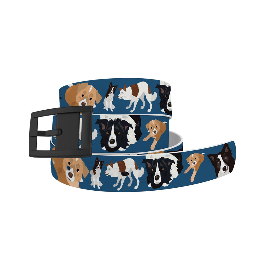 Matching Border Collie Belt Ghost Belt C4 BELTS