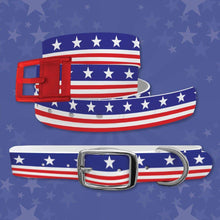 Load image into Gallery viewer, Americana Throwback Belt & Dog Collar Bundle