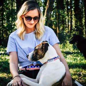 Americana Throwback Belt & Dog Collar Bundle