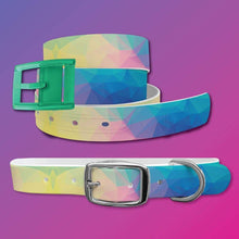 Load image into Gallery viewer, Geometric Belt & Dog Collar Bundle
